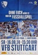 2014/15 VfB Stuttgart Pokal